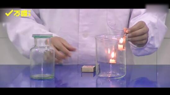43.二氧化碳的性质探究